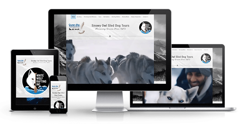 Snowy Owl Tours Website displayed on cell phone, tablet, desktop and tablet