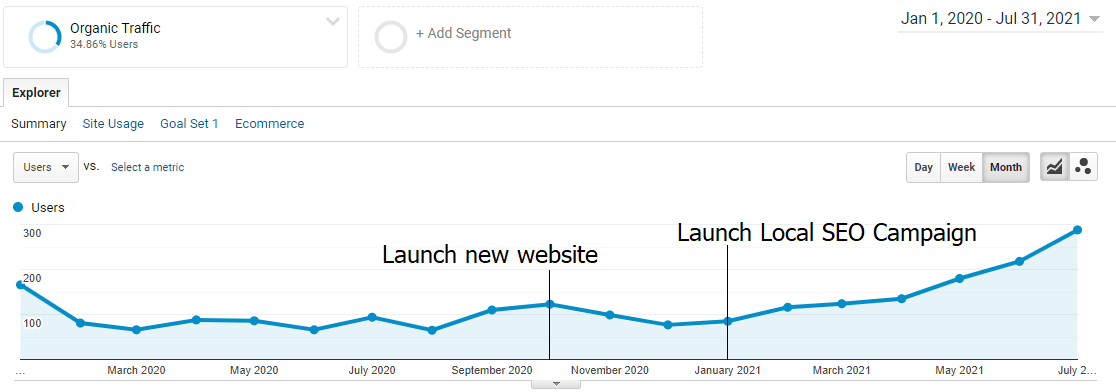 Organic traffic graph showing website growth from SEO campaign launch.